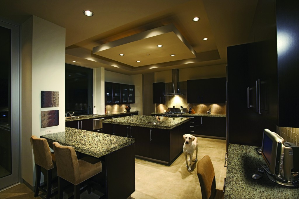 A pet dog is seen near a counter in an elegant kitchen --- Image by © Royalty-Free/Corbis